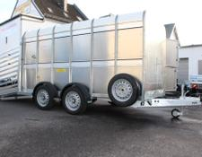 Ifor Williams TA 510 mit Quertrennung